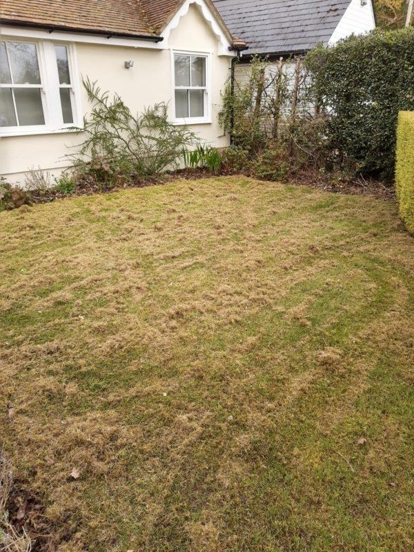 lawn scarify